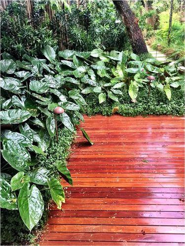 deck jardim copacabana:Jardim com piso de Deck de Daniel Nunes Paisagismo – 73415 no Viva